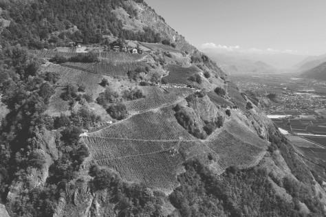 Domaine de Beudon: la scalata verso il paradiso