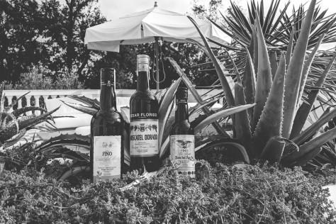 Il risorgimento dello sherry