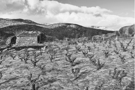 Guida pratica alla Sierra de Gredos