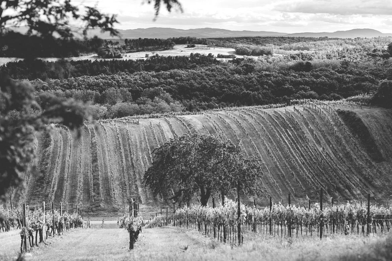 Guida pratica al Burgenland