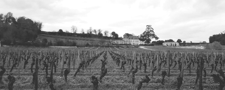 Guida pratica a Bordeaux