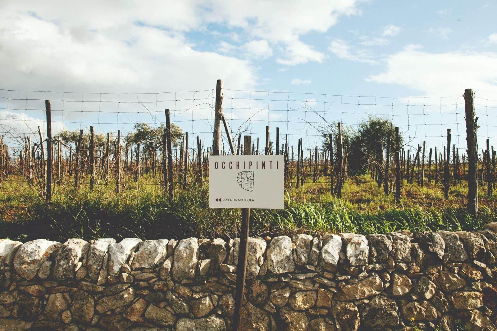 Azienda Agricola Occhipinti
