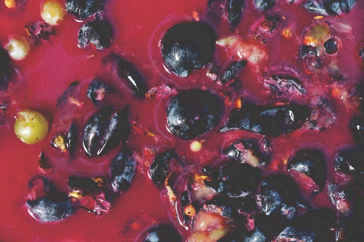 Lieviti fermentazione