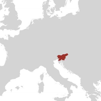 Slovenia, Slavcek