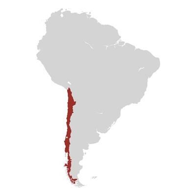 Cile, La Mision
