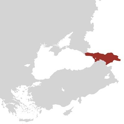 Georgia, Zurab Topuridze