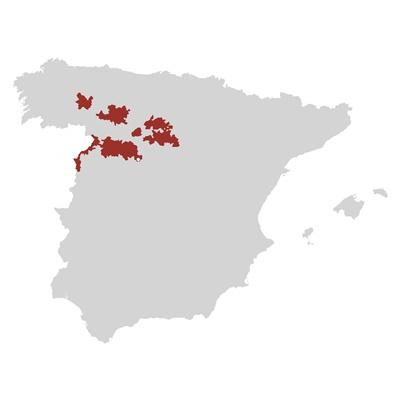 Spagna, Comando G