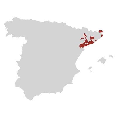 Spagna; Jordi Llorens